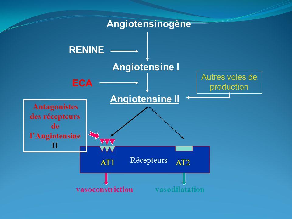 AT1 Récepteurs vasoconstriction RENINE Angiotensinogène Angiotensine I Angiotensine II AT2 vasodilatation Antagonistes des récepteurs de lAngiotensine II ECA Autres voies de production