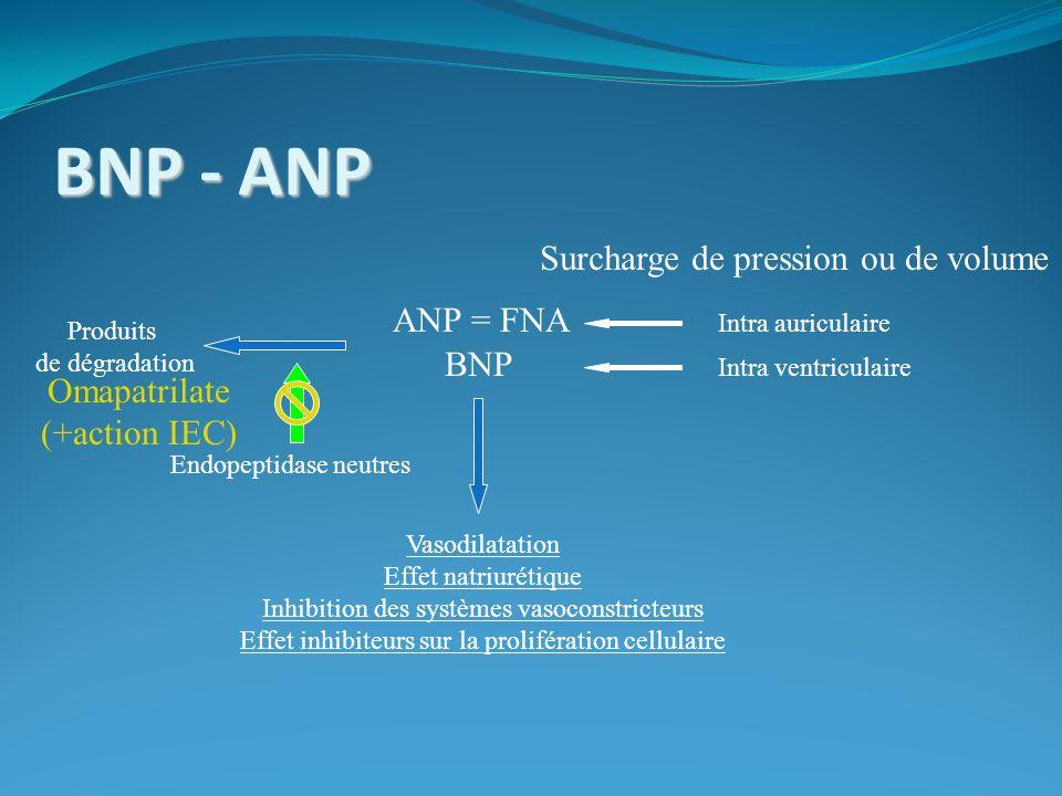 BNP - ANP Surcharge de pression ou de volume BNP Vasodilatation Effet natriurétique Inhibition des systèmes vasoconstricteurs Effet inhibiteurs sur la prolifération cellulaire Intra ventriculaire Intra auriculaire ANP = FNA Produits de dégradation Endopeptidase neutres Omapatrilate (+action IEC)