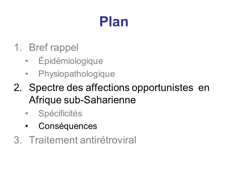 Plan 1.Bref rappel Épidémiologique Physiopathologique 2.Spectre des affections opportunistes en Afrique sub-Saharienne Spécificités Conséquences 3.Traitement antirétroviral