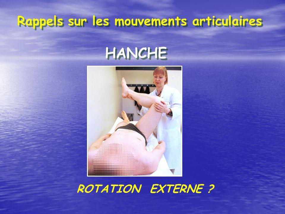 Rappels sur les mouvements articulaires HANCHE ROTATION EXTERNE ?