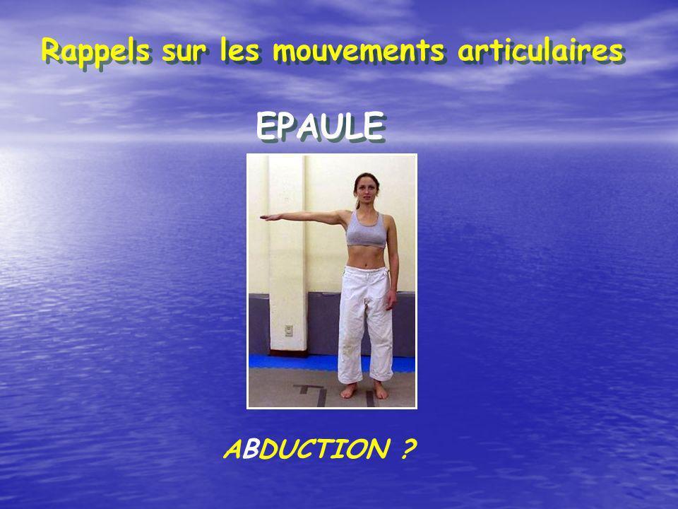 Rappels sur les mouvements articulaires EPAULE ABDUCTION ?