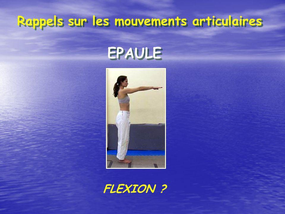 Rappels sur les mouvements articulaires EPAULE EXTENSION ?