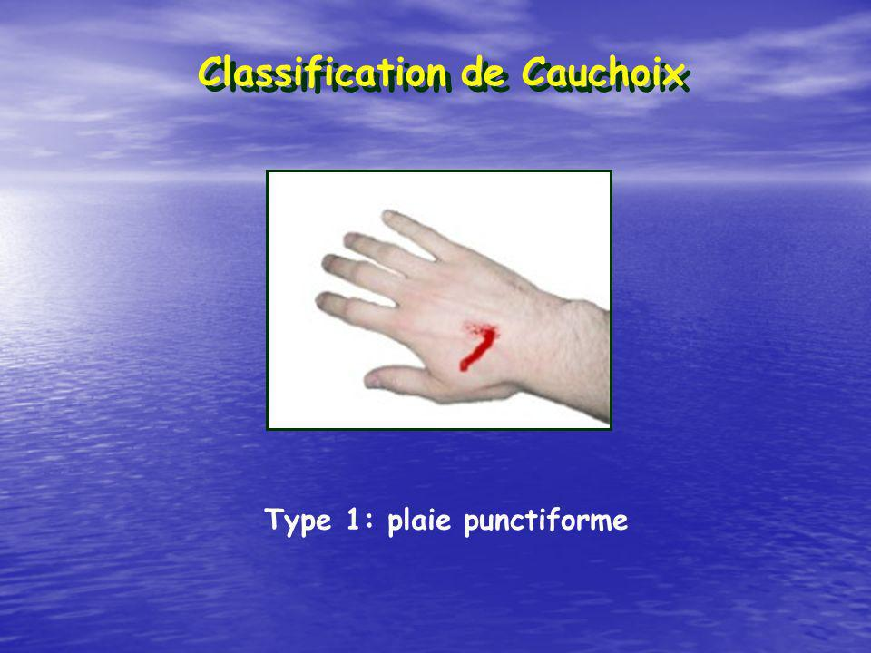 Classification de Cauchoix Type 1: plaie punctiforme