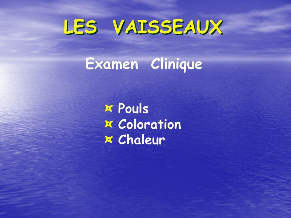 Examen Clinique ¤ Pouls ¤ Coloration ¤ Chaleur