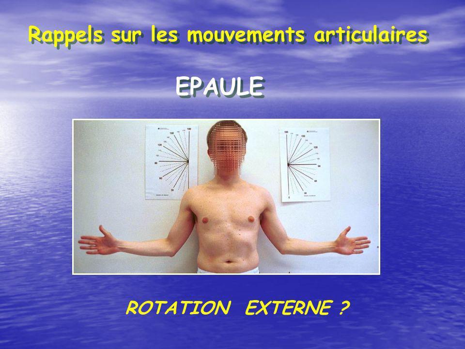Rappels sur les mouvements articulaires EPAULE ROTATION INTERNE ?