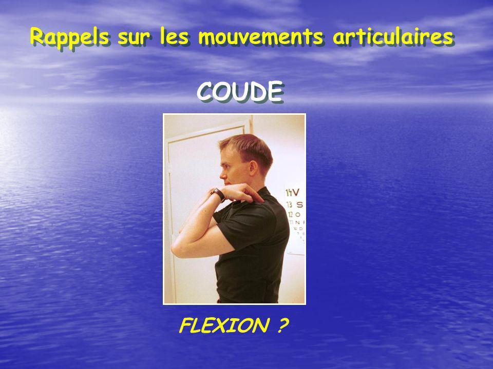 Rappels sur les mouvements articulaires COUDE FLEXION ?