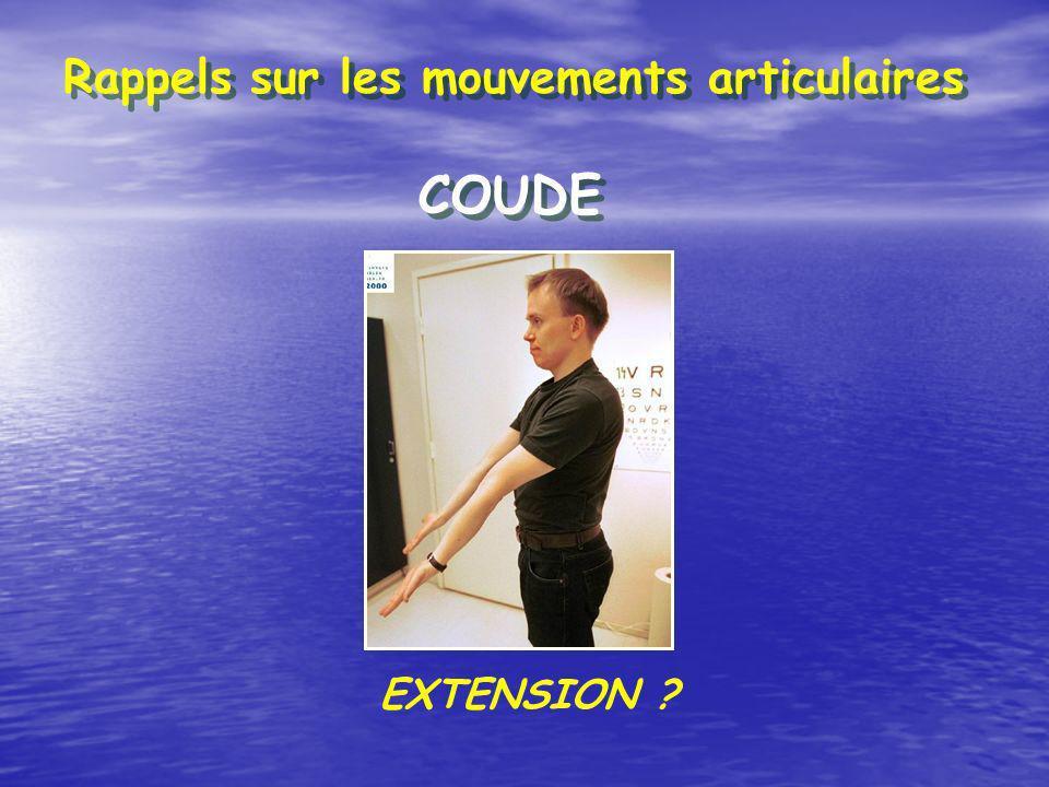 COUDE Rappels sur les mouvements articulaires EXTENSION ?
