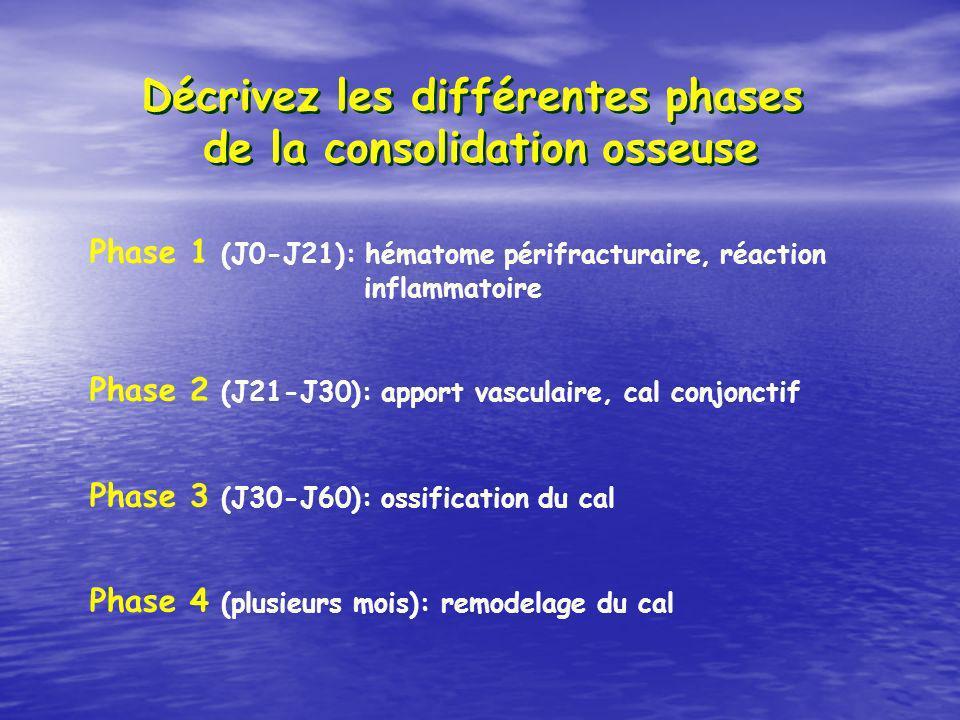 Décrivez les différentes phases de la consolidation osseuse Phase 1 (J0-J21): hématome périfracturaire, réaction inflammatoire Phase 2 (J21-J30): apport vasculaire, cal conjonctif Phase 3 (J30-J60): ossification du cal Phase 4 (plusieurs mois): remodelage du cal