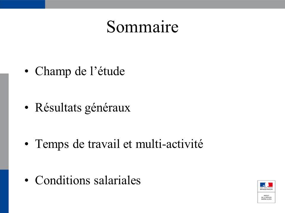 Sommaire Champ de létude Résultats généraux Temps de travail et multi-activité Conditions salariales