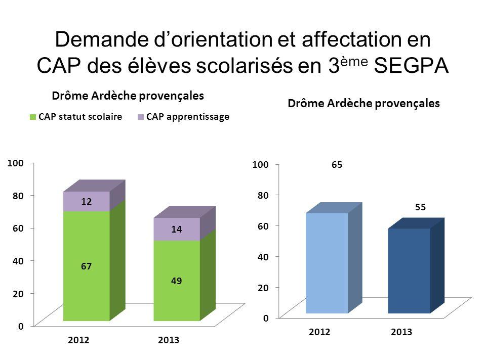 Demande dorientation et affectation en CAP des élèves scolarisés en 3 ème SEGPA