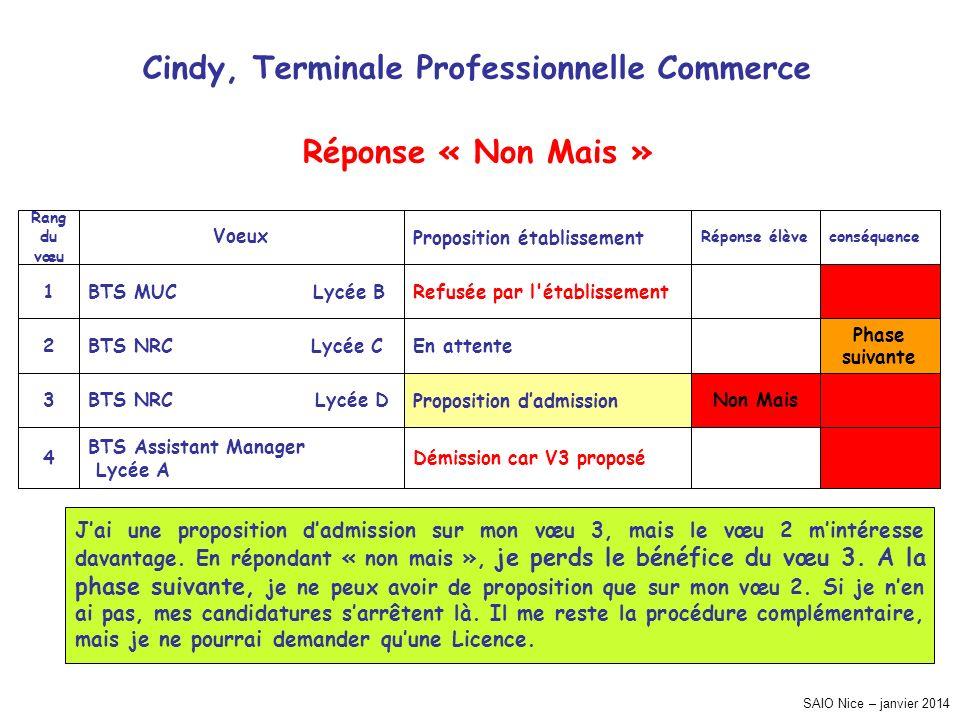 SAIO Nice – janvier 2014 Cindy, Terminale Professionnelle Commerce Phase suivante conséquence Démission car V3 proposé BTS Assistant Manager Lycée A 4