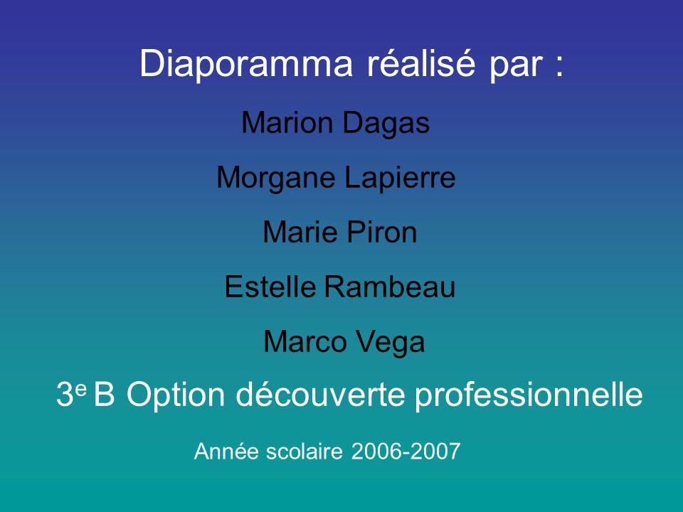Diaporamma réalisé par : Marion Dagas Morgane Lapierre Marie Piron Estelle Rambeau Marco Vega 3 e B Option découverte professionnelle Année scolaire 2006-2007