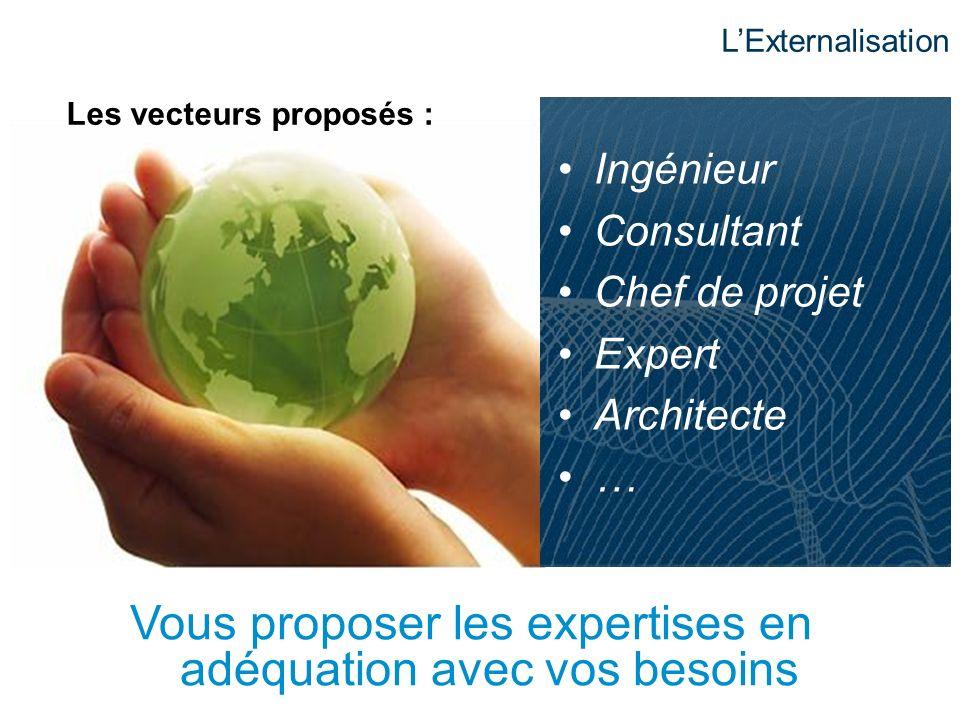 Vous proposer les expertises en adéquation avec vos besoins Ingénieur Consultant Chef de projet Expert Architecte … Les vecteurs proposés : LExternali