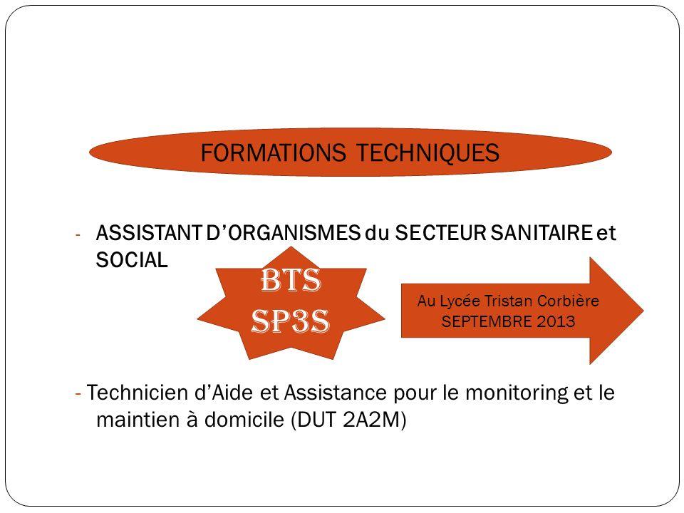 - ASSISTANT DORGANISMES du SECTEUR SANITAIRE et SOCIAL - Technicien dAide et Assistance pour le monitoring et le maintien à domicile (DUT 2A2M) FORMAT