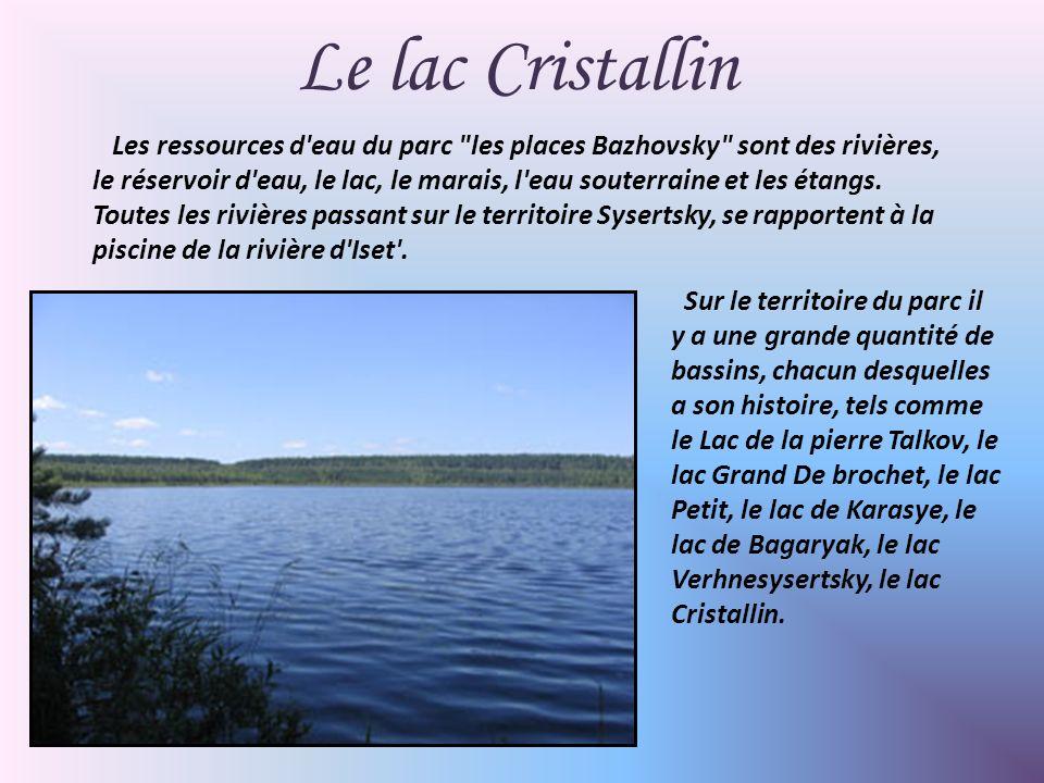 Les ressources d eau du parc les places Bazhovsky sont des rivières, le réservoir d eau, le lac, le marais, l eau souterraine et les étangs.