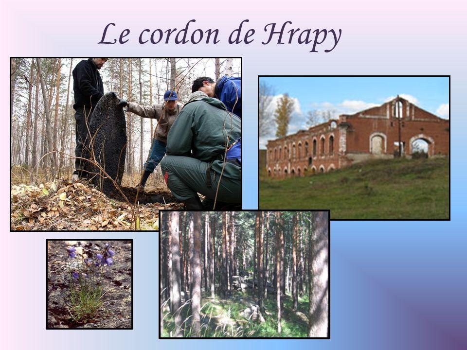 Le cordon de Hrapy