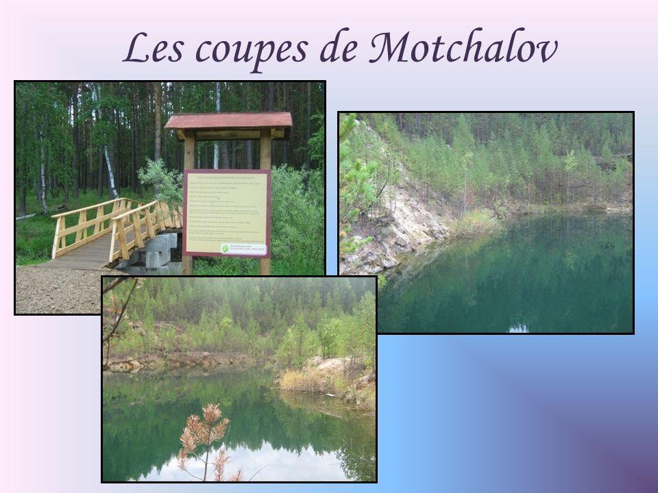Les coupes de Motchalov