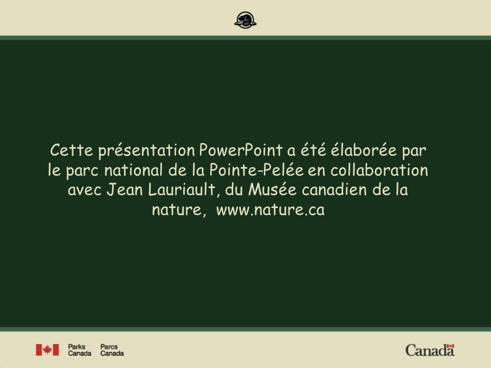Cette présentation PowerPoint a été élaborée par le parc national de la Pointe-Pelée en collaboration avec Jean Lauriault, du Musée canadien de la nat