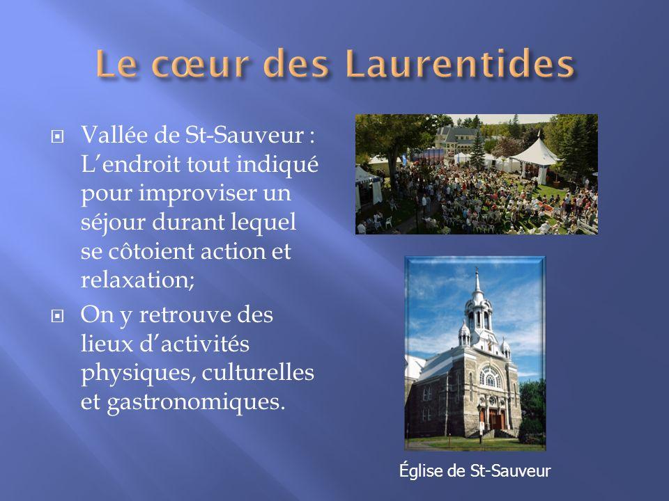 Vallée de St-Sauveur : Lendroit tout indiqué pour improviser un séjour durant lequel se côtoient action et relaxation; On y retrouve des lieux dactivi