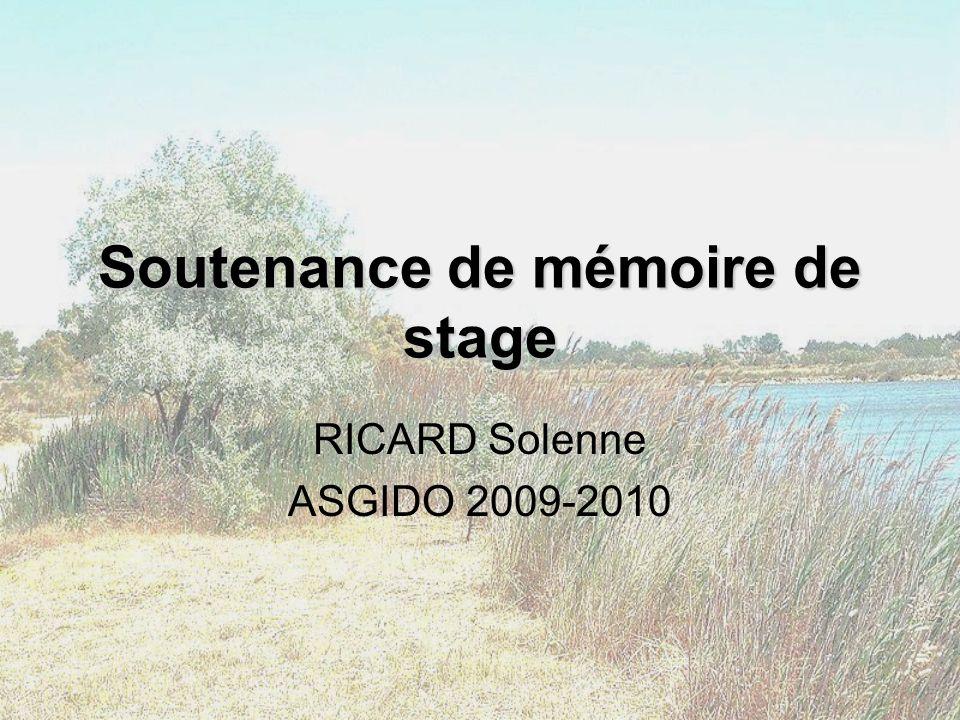 Soutenance de mémoire de stage RICARD Solenne ASGIDO 2009-2010