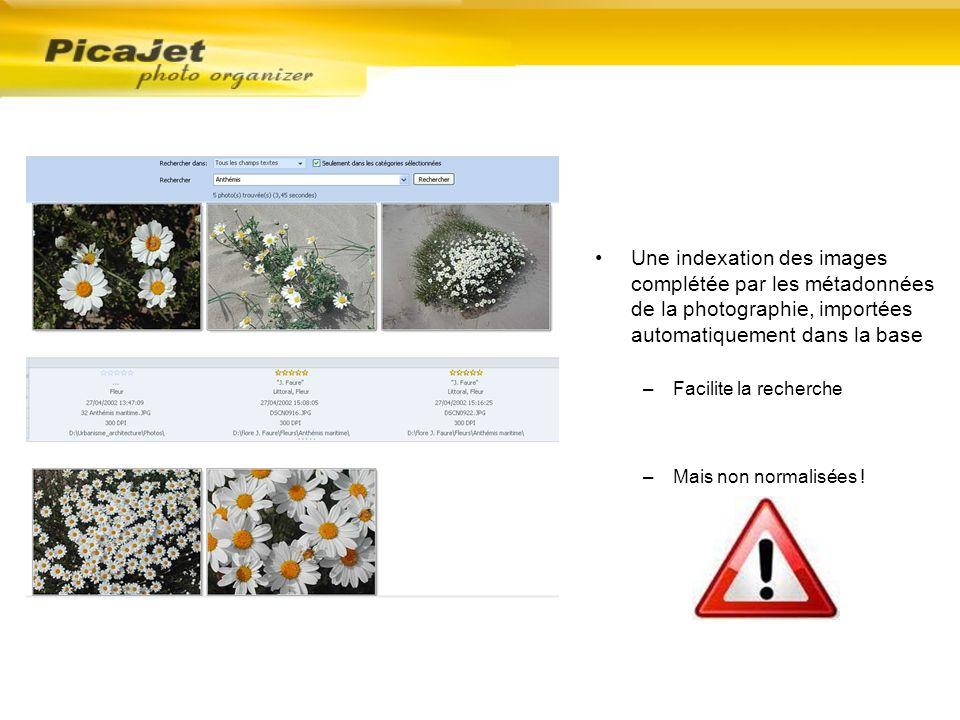 Une indexation des images complétée par les métadonnées de la photographie, importées automatiquement dans la base –Facilite la recherche –Mais non no