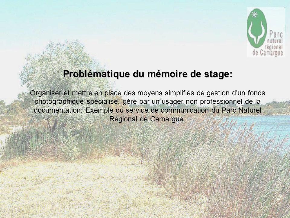 Problématique du mémoire de stage: Problématique du mémoire de stage: Organiser et mettre en place des moyens simplifiés de gestion dun fonds photogra