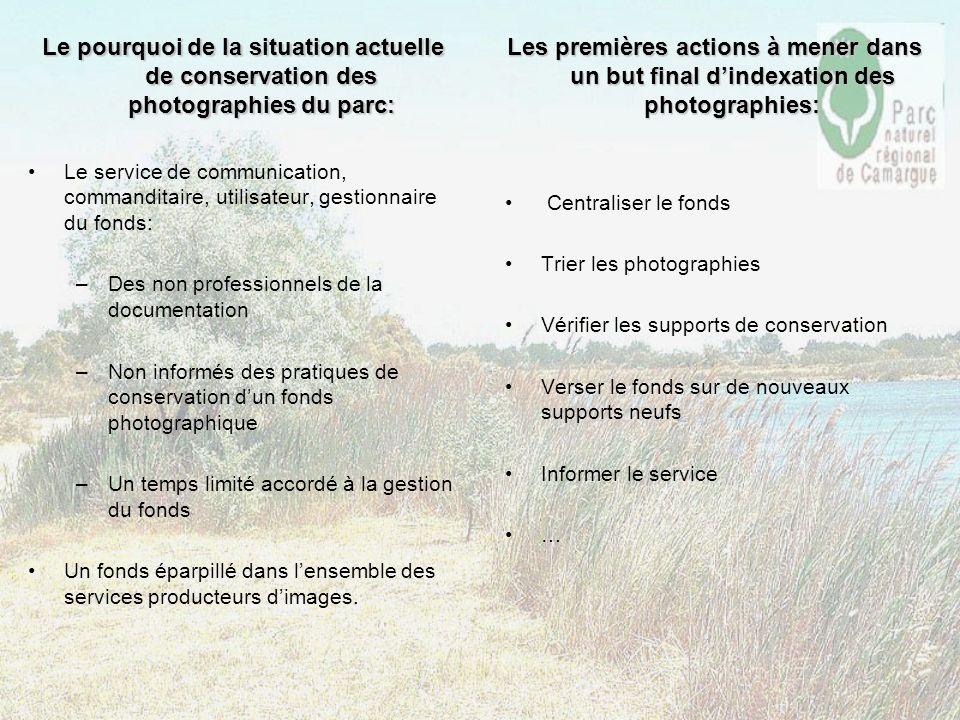 Le pourquoi de la situation actuelle de conservation des photographies du parc: Le service de communication, commanditaire, utilisateur, gestionnaire