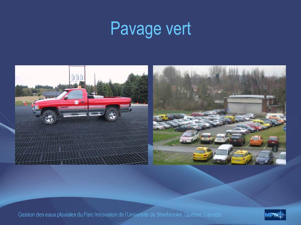 Gestion des eaux pluviales du Parc Innovation de lUniversité de Sherbrooke, Québec, Canada Pavage vert