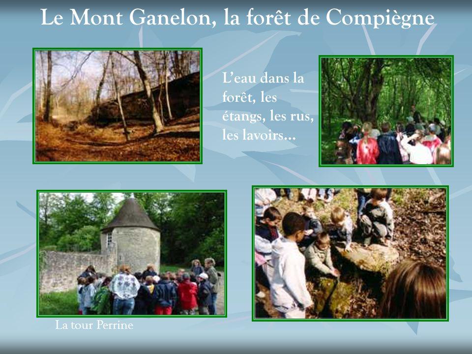 La tour Perrine Le Mont Ganelon, la forêt de Compiègne Leau dans la forêt, les étangs, les rus, les lavoirs…