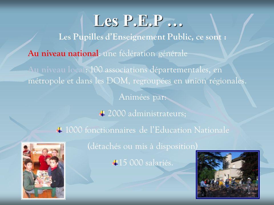Les P.E.P … Les Pupilles dEnseignement Public, ce sont : Au niveau national : une fédération générale Au niveau local : 100 associations départemental