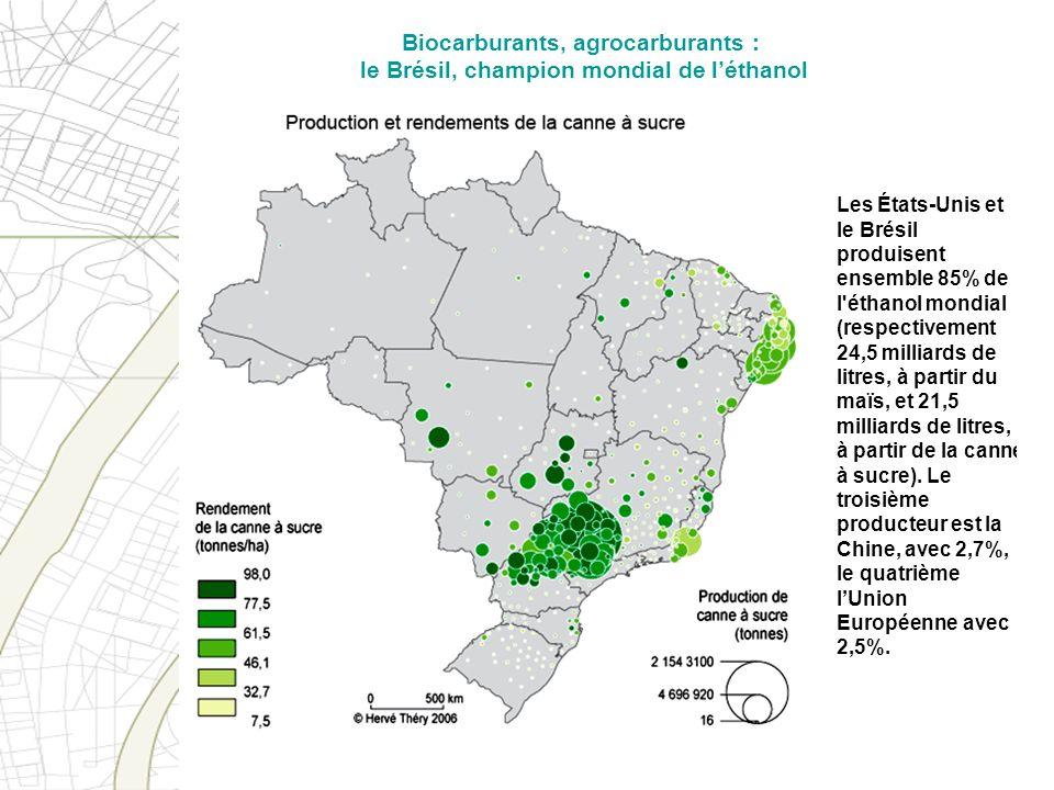 Les États-Unis et le Brésil produisent ensemble 85% de l'éthanol mondial (respectivement 24,5 milliards de litres, à partir du maïs, et 21,5 milliards