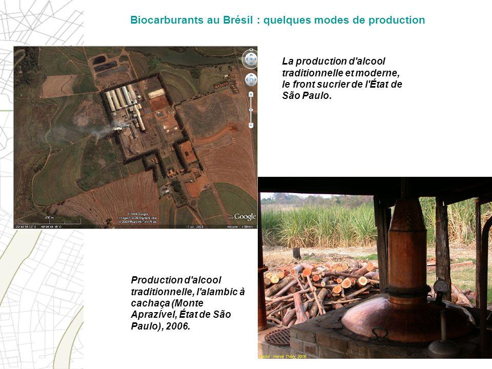 La production d'alcool traditionnelle et moderne, le front sucrier de l'État de São Paulo. Production d'alcool traditionnelle, l'alambic à cachaça (Mo