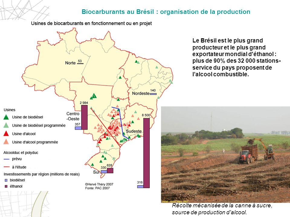 Le Brésil est le plus grand producteur et le plus grand exportateur mondial d'éthanol : plus de 90% des 32 000 stations- service du pays proposent de