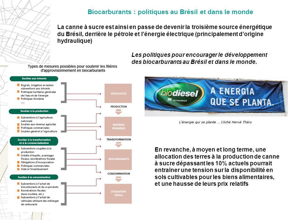 La canne à sucre est ainsi en passe de devenir la troisième source énergétique du Brésil, derrière le pétrole et lénergie électrique (principalement d