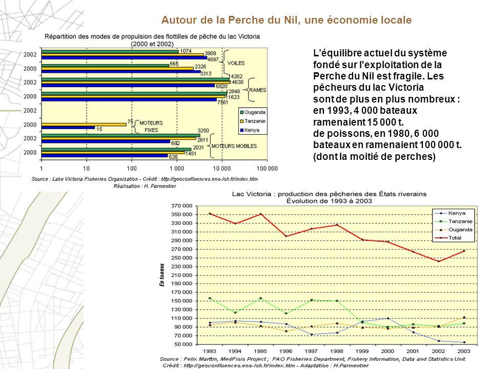 Léquilibre actuel du système fondé sur l'exploitation de la Perche du Nil est fragile. Les pêcheurs du lac Victoria sont de plus en plus nombreux : en