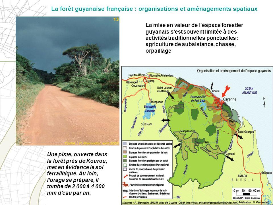 La mise en valeur de l'espace forestier guyanais s'est souvent limitée à des activités traditionnelles ponctuelles : agriculture de subsistance, chass