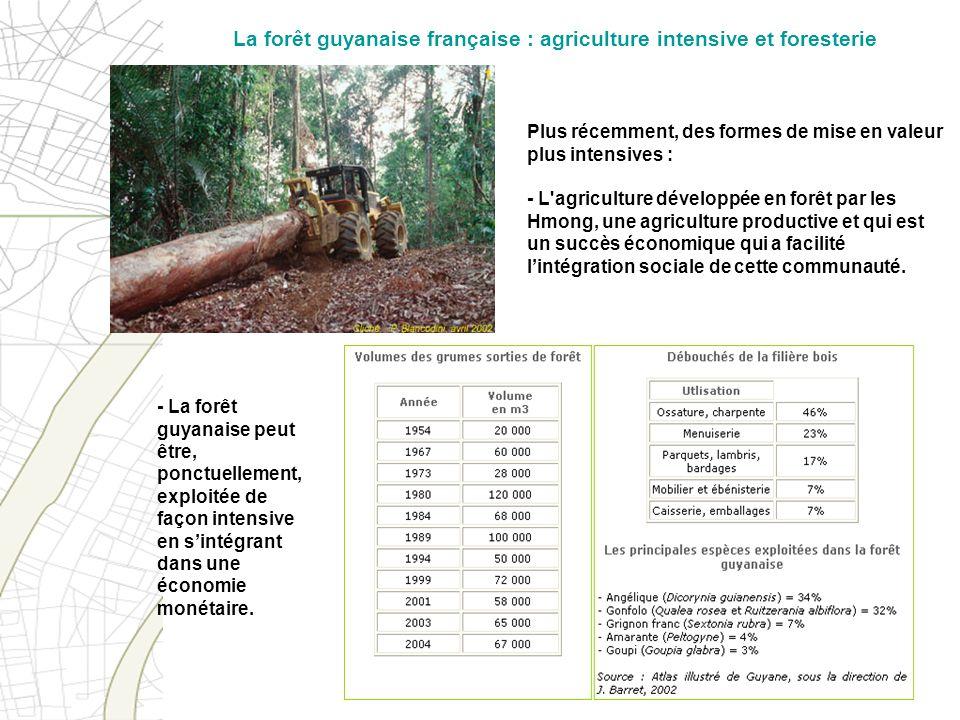Plus récemment, des formes de mise en valeur plus intensives : - L'agriculture développée en forêt par les Hmong, une agriculture productive et qui es