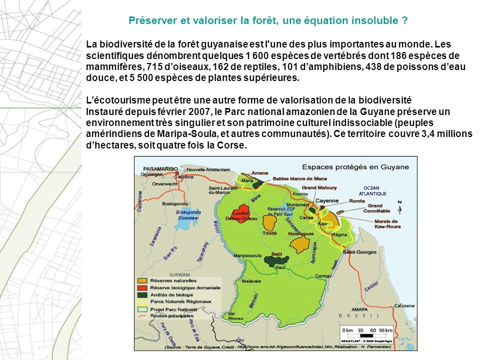 La biodiversité de la forêt guyanaise est l'une des plus importantes au monde. Les scientifiques dénombrent quelques 1 600 espèces de vertébrés dont 1