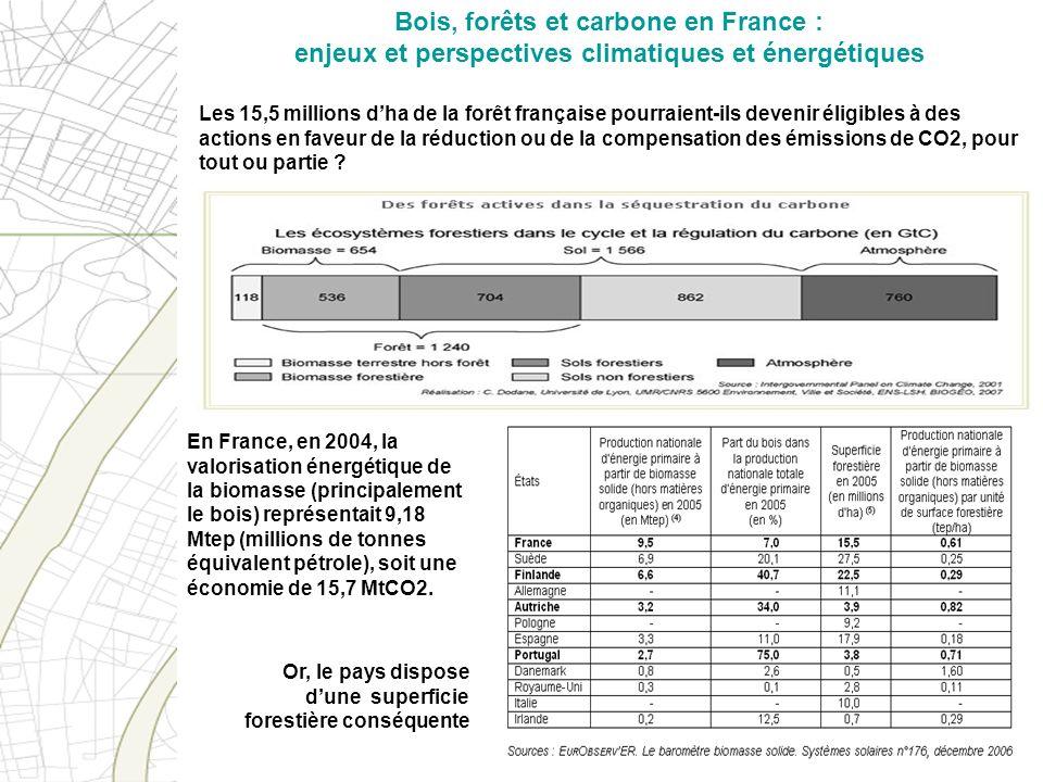 Bois, forêts et carbone en France : enjeux et perspectives climatiques et énergétiques Les 15,5 millions dha de la forêt française pourraient-ils deve