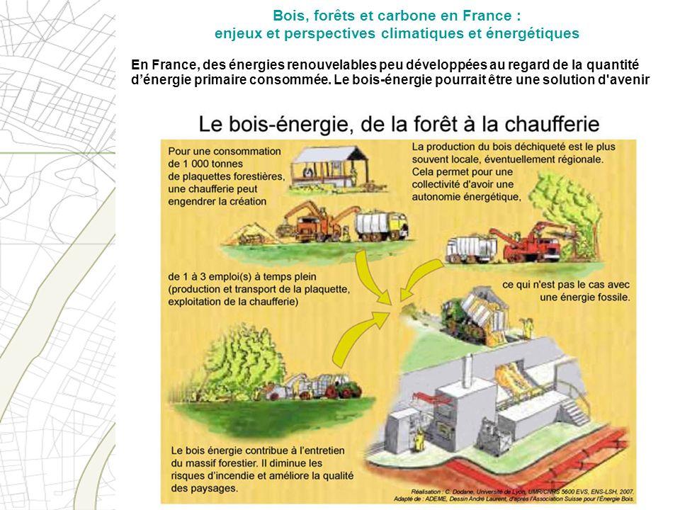 En France, des énergies renouvelables peu développées au regard de la quantité dénergie primaire consommée. Le bois-énergie pourrait être une solution