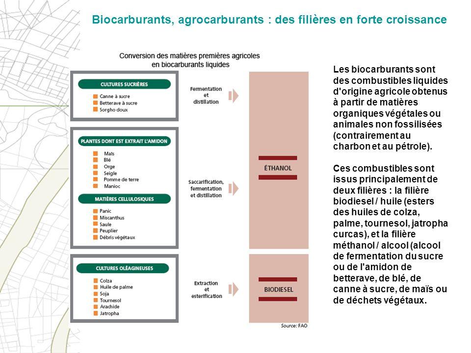 Les biocarburants sont des combustibles liquides d'origine agricole obtenus à partir de matières organiques végétales ou animales non fossilisées (con