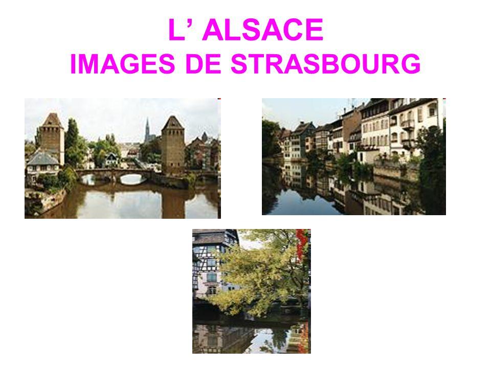 L ALSACE IMAGES DE STRASBOURG
