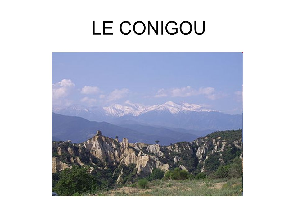 LE CONIGOU