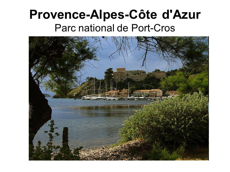 Provence-Alpes-Côte d'Azur Parc national de Port-Cros