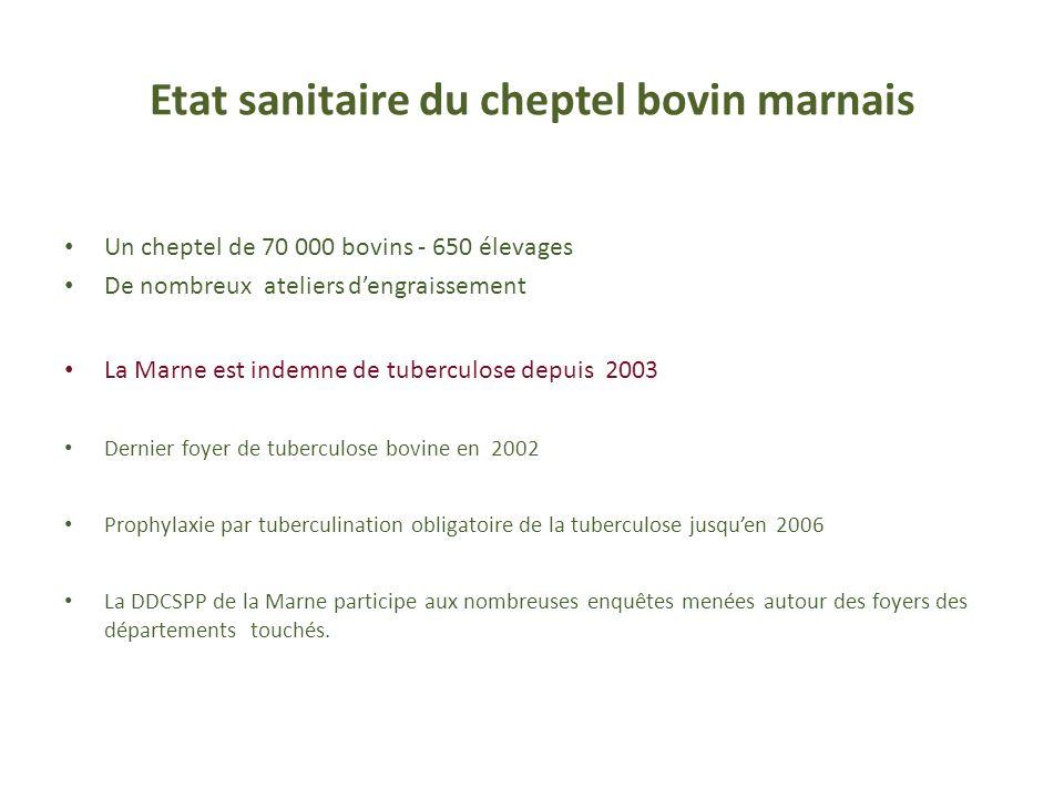 Etat sanitaire du cheptel bovin marnais Un cheptel de 70 000 bovins - 650 élevages De nombreux ateliers dengraissement La Marne est indemne de tubercu
