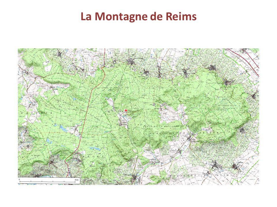 La Montagne de Reims