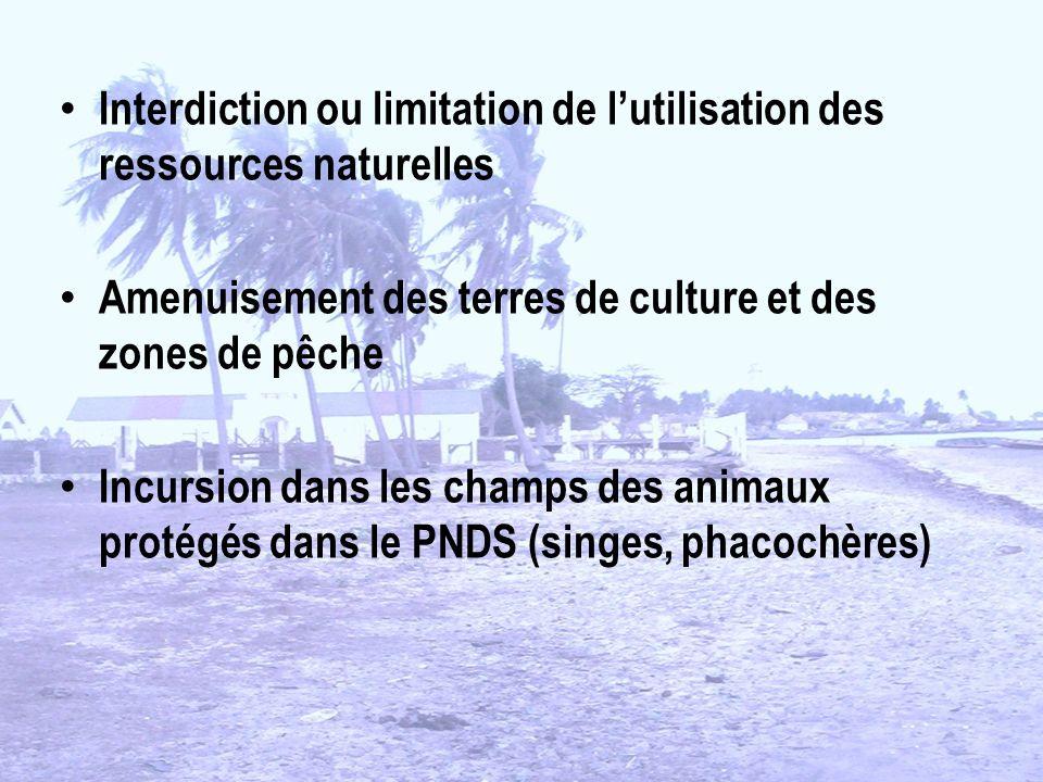 Interdiction ou limitation de lutilisation des ressources naturelles Amenuisement des terres de culture et des zones de pêche Incursion dans les champs des animaux protégés dans le PNDS (singes, phacochères)