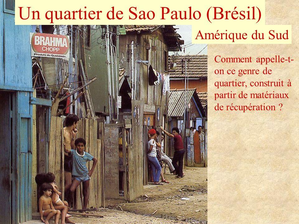 Un quartier de Sao Paulo (Brésil) Amérique du Sud Comment appelle-t- on ce genre de quartier, construit à partir de matériaux de récupération ?