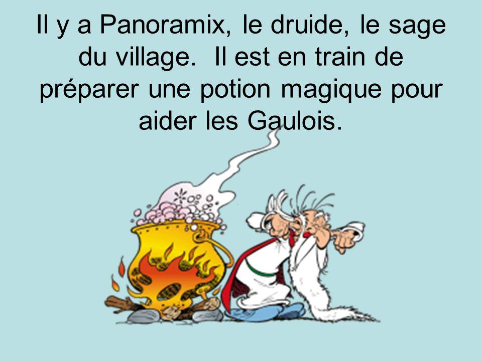 Il y a Panoramix, le druide, le sage du village. Il est en train de préparer une potion magique pour aider les Gaulois.
