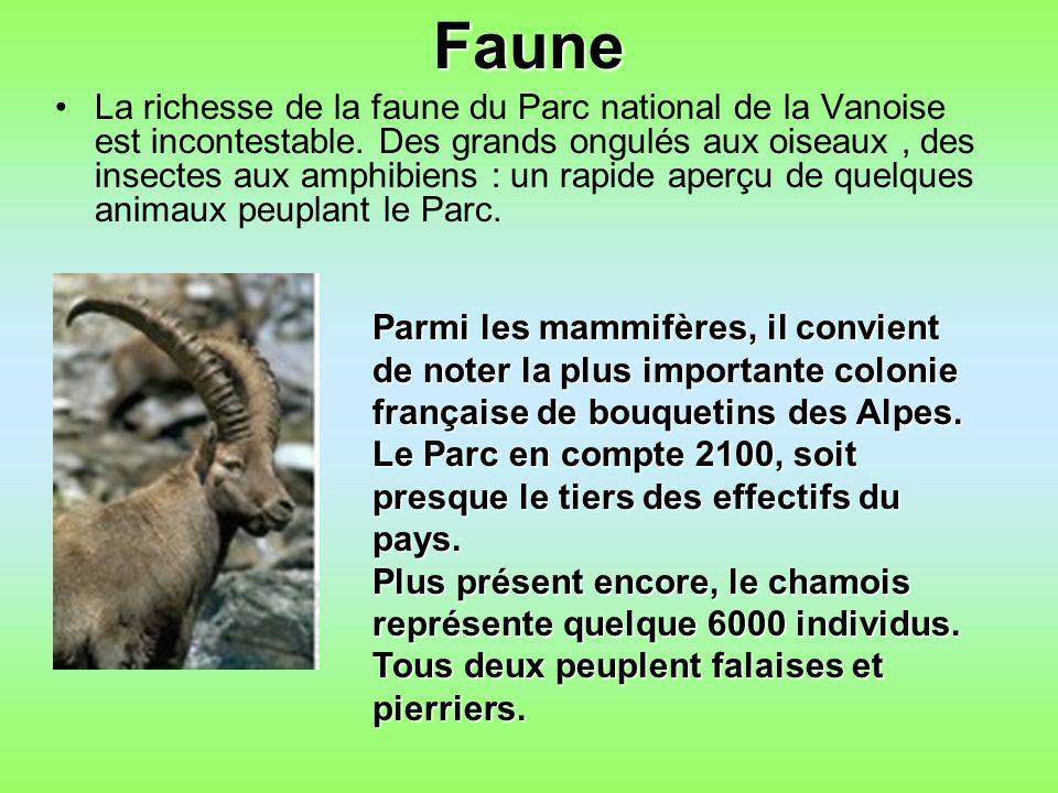 Faune La richesse de la faune du Parc national de la Vanoise est incontestable.
